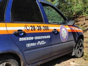 Мужчину, пропавшего в Воскресенском районе, нашли живым