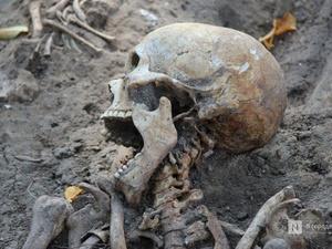 Более 700 захоронений обнаружили в Нижегородском кремле