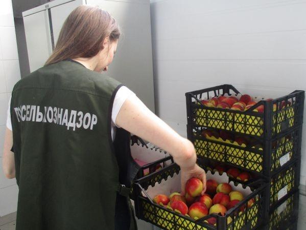 Десятки тонн зараженных нектаринов выявлены за неделю в Нижегородской области - фото 1