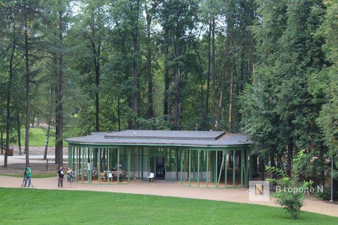 52 гектара для отдыха: Как изменился парк «Швейцария» - фото 87