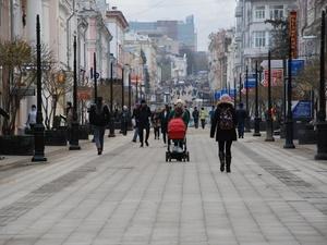 Нижегородские депутаты отклонили законопроект об увеличении маткапитала