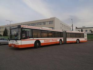 Еще два автобуса-гармошки вышли на маршрут в Нижнем Новгороде