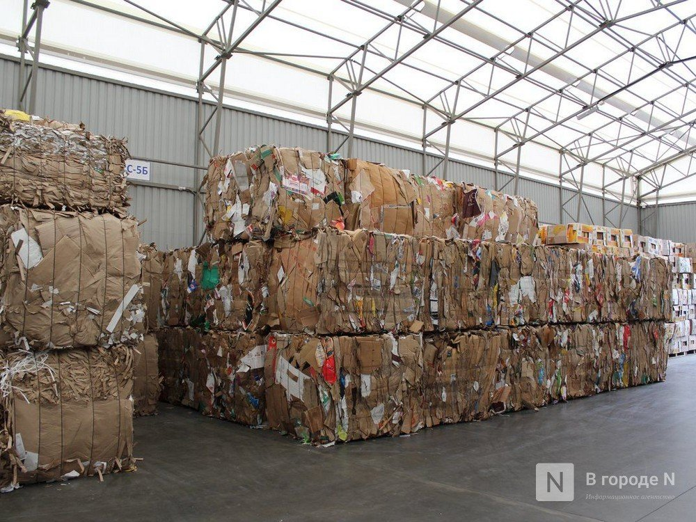 Экологический фрилансер: как заработать на мусоре и сохранить природу - фото 5
