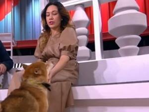 Нижегородская оперная певица показала, как поет дуэтом с собакой