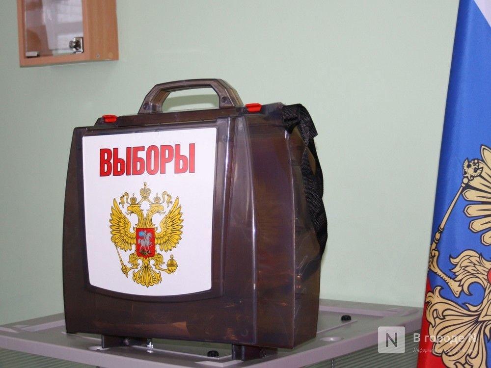Экс-сотрудник нижегородской ФСИН обогатился за счет выборов - фото 1