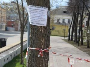 Никитин: Нижегородская область пока не готова ко второму этапу снятия ограничений