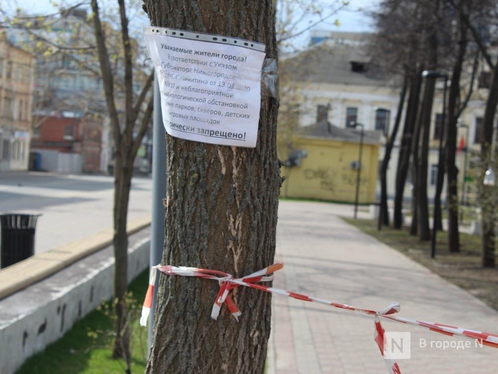 Нижегородская область не готова ко второму этапу снятия ограничений - фото 1