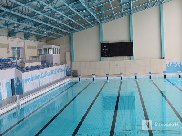 Возрожденный «Дельфин»: как изменился знаменитый нижегородский бассейн - фото 38