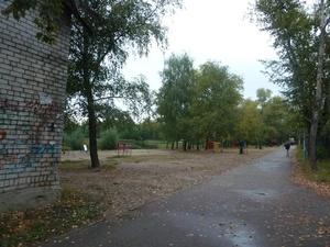 Нижегородцы выступили в защиту Светлоярского парка от застройки