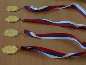 Шесть медалей завоевали нижегородцы на международных соревнованиях по вольной борьбе в Венгрии