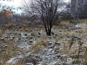 ЖК на краю Лопатинского оврага планирует построить ГК «Каскад»