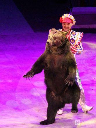 Чудеса «Трансформации» и медвежья кадриль: премьера циркового шоу Гии Эрадзе «БУРЛЕСК» состоялась в Нижнем Новгороде - фото 37