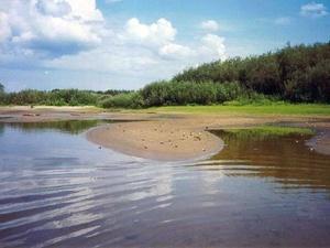 Житель Володарска пошел купаться и пропал без вести
