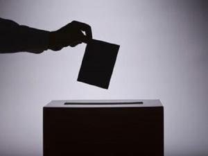 Более 40 нарушений зафиксировано на выборах в Нижегородской области