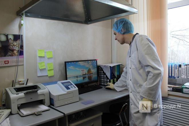 Что скрывает колбаса: нижегородские специалисты на страже качества - фото 31