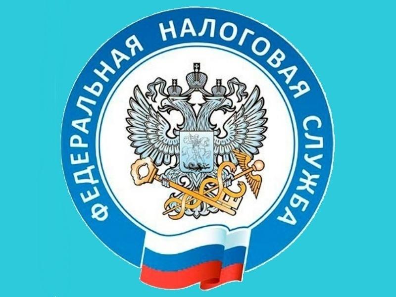Три налоговые инспекции в Нижнем Новгороде и Дзержинске отменяют прием граждан с 9 ноября - фото 1